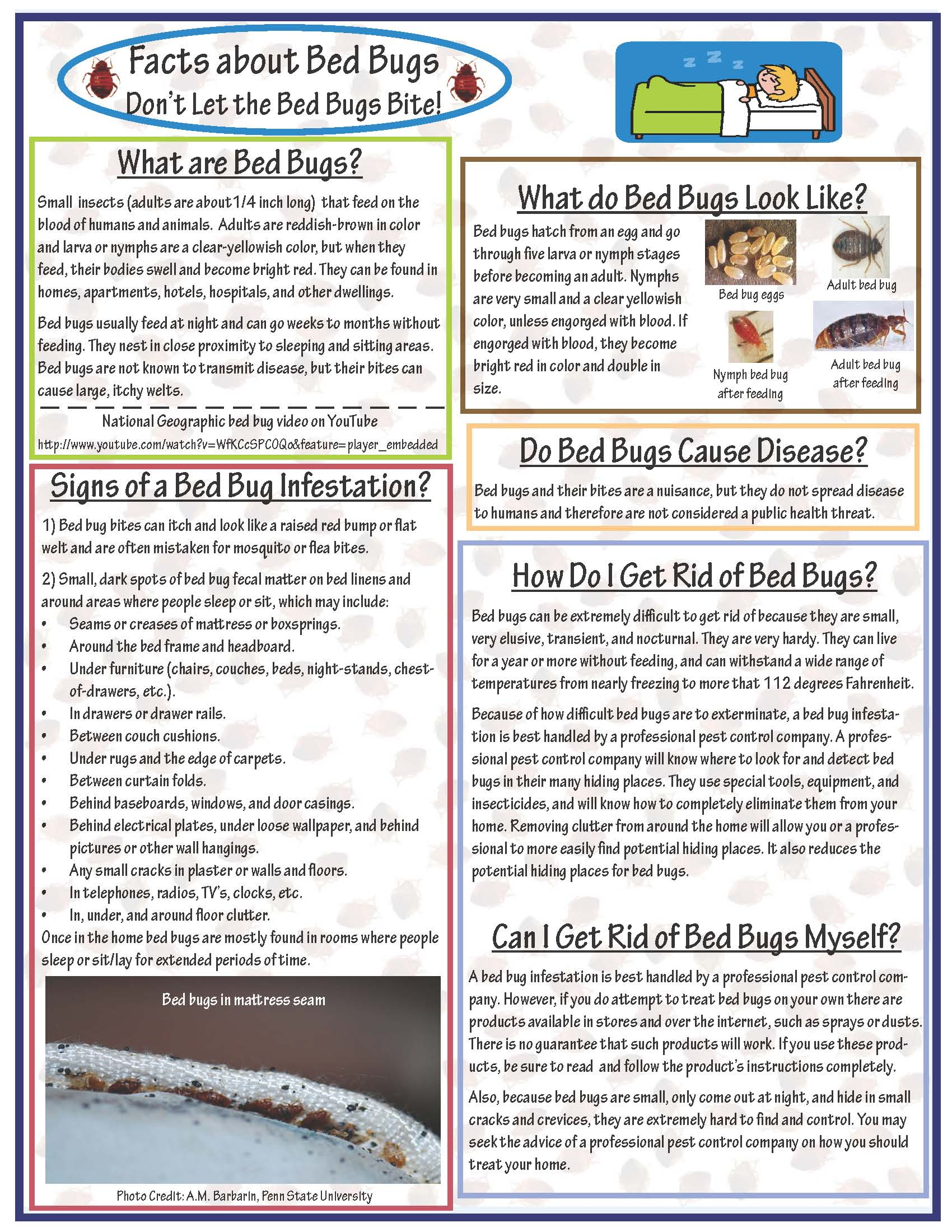 Superior Bed Bug Information Sheet
